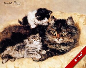 COMFY COZY CUTE CATS CUDDLING KITTEN PET ANIMAL ART PAINTING REAL CANVAS PRINT