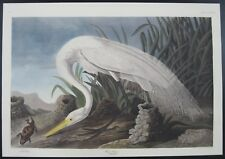 Audubon White Heron # 386 DEF Leipzig Edition Birds of America 1972