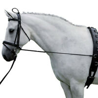 Black Horse Neck Stretcher Horse Training Grooming Caring Tool 3 Meters Long