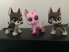 3 Littlest Pet Shop GREAT DANE Dogs #817 #817-2 Brown & #2598 Pink USA Seller