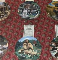 "Set Of 6 Vintage Collector Plates Featuring ""Classic Sporting Dogs"""