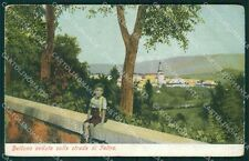 Belluno Città Strada di Feltre cartolina QT3684
