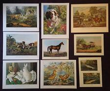 CURRIER & IVES VINTAGE LOT of 9 - DOGS HORSES BUNNIES FISH COLOR Art Lithographs