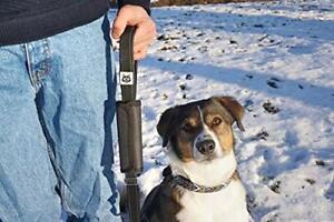 2 in 1 Hundeleine - Hundegurt - Leine für Hund - Sicherheitsgurt - Führleine