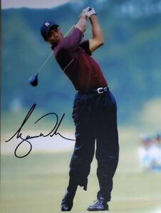 Tiger Woods Hand Signed 8x10 Photo W/ Holo COA