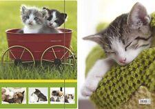 Zeichenmappe für DIN A4 RNK Motiv Katzen Eckspannmappe Sammelmappe Karton