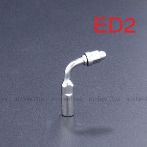 Dental Ultrasonic Piezo Scaler Endo Tip ED2 TO DTE SATELEC NSK Handpiece