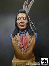 Black Dog 1/10 Sioux Tribesman Dakota People Indian Native American Bust B10020