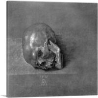 ARTCANVAS Skull Canvas Art Print by Albrecht Durer