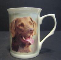 Chesapeake Bay Retriever Dog Fine Bone China Mug Cup Beaker