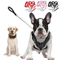 Strass Hundegeschirr und Halsband und Leine Verstellbar Bulldogge Pitbull M/L/XL