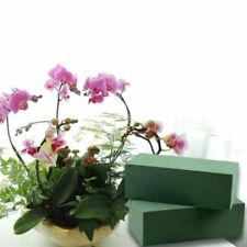 Floral Forms, Bases & Frames