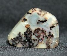 22.7 ct Opalized Wood from Virgin Valley Nevada - precious stable opal!