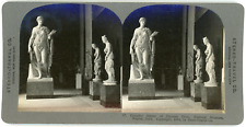 Stereo, Stereo Travel Co., Graceful Statue of Farnese Flora, National Museum, Na