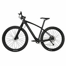 29er Carbon Bike MTB Complete Mountain Bicycle Wheels 11s Fork Hardtail 15.5