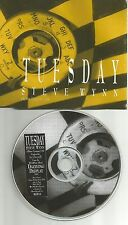 Dream Syndicate STEVE WYNN Tuesday 1992 RARE PROMO Radio DJ CD single USA MINT