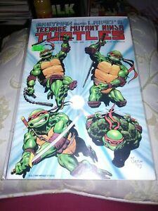 Teenage Mutant Ninja Turtles #25, Mirage Studios,1989,NM,Rick Veitch Art& Script