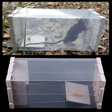 Humane Rat Trap Cage Live Animal Pest Rodent Mice Mouse Control Bait Catch White
