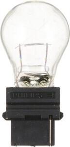 Back Up Light Bulb-Standard - Twin Blister Pack Philips 3156B2