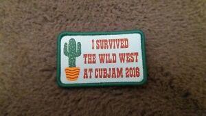 Cub Scout Badge Cubjam 2016