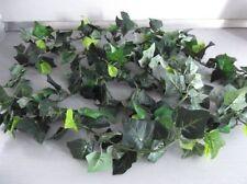 Leaf & Foliage