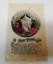 ANTIQUE KITTEN POSTCARD REAL PHOTO TINTED EMBOSSED A NEW YEAR'S WISH