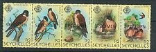 60798 -  SEYCHELLES  - STAMPS:  1980 Birds KESTRELL strip overprinted SPECIMEN