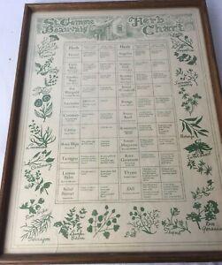 """Vintage HERB CHART St. Gemme Beauvais 14""""x19"""" Botanical Herb Chart Framed Print"""