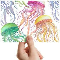 "Colourful Jellyfish Sea Ocean Small Photograph 6""x4"" Art Print Photo Gift #14447"
