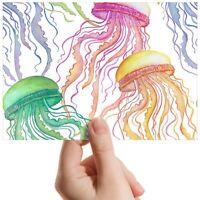 "Colourful Jellyfish Sea Ocean Small Photograph 6""x4"" Art Print Photo Gift #14447"