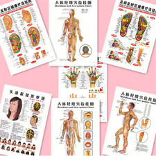 7pcs English Acupuncture Meridian Acupressure Points Posters Chart Wall Map BK