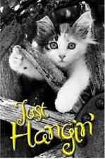 """Kitten Hang Time Poster Just Hangin' Cute Cat Kitten 24X36"""" Inch NEW"""