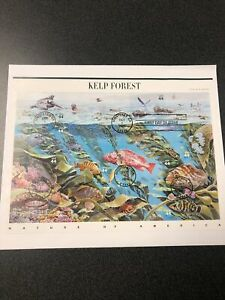 US FDC 4423 Kelp Forest Souvenir Page First Day Of Issue Pane Of 10.