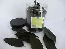 Vase Filler Green Leaves - Target Home