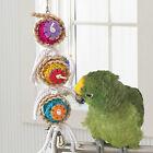 Pet Bird Bites Parrot Climb Chew Toys Hanging Cockatiel Parakeet Swing Cage