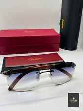 Cartier Smooth Stainless Steel RimFrame SunGlasses/ Sunglasses Frames Vintage