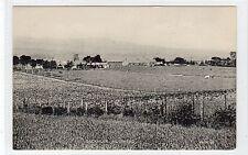 BACKMUIR, MUIRHEAD: Angus postcard (C25127)