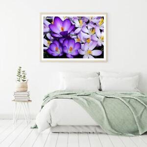 Purple Flowers Closeup Photograph Print Premium Poster High Quality choose sizes