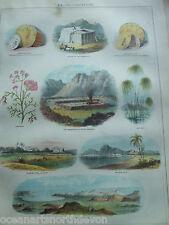 Antique Print C1870'S pèlerins piscine Succoth Mer Rouge Marron La sainte bible religion