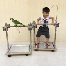 Parrot Rack Tree Bird Stand For Cacatua Galerita Psittacidae Psittacus Erithacus