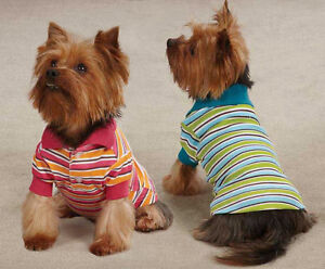 Dog Polo Shirt Top Brite Stripe East Side Striped Dog Polos Blue Raspberry