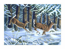 "11 ""Passing Through"" Deer 28x20 Canvas Print 20x28 by Robert Metropulos"