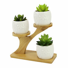 More details for owl pots with stand ceramic plant pot with bamboo stand no plants included m&w