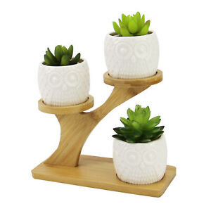 Owl Pots With Stand Ceramic Plant Pot With Bamboo Stand No Plants Included M&W