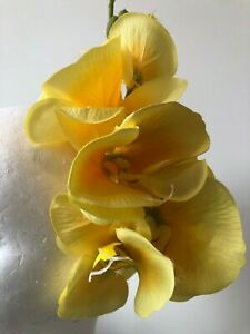 Cute yellow orchid fascinator with a silver headband! Gorgeous on!