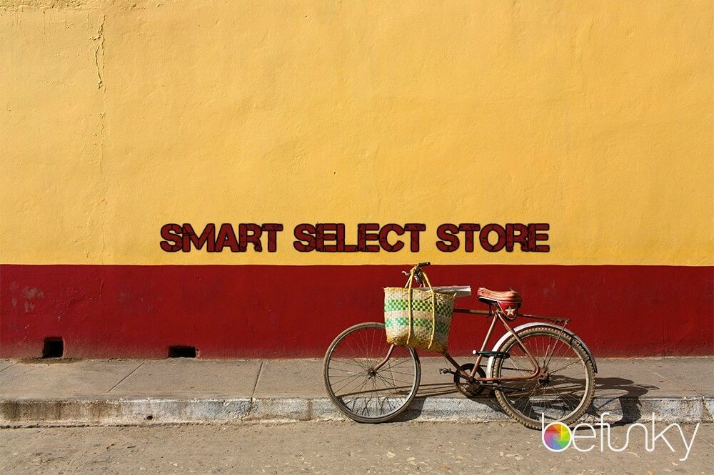 Smart Select Store