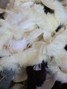 Genuine Sheepskin Offcuts 1kg Long Wool Arts Crafts Soft Wool Pieces NZ Breeds