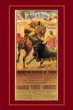 VINTAGE SPANISH ARENAS DE BARCELONA BULLFIGHT poster matador bull 24X36  -PW9