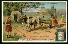 Eutruscan Farmers Plowing With Oxen Crop Cattle Hstory c1903 Trade Ad Card f