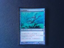 3X Merrow Reejerey - Lorwyn - * FOIL Chinese, SEE PICTURES * MTG CARD